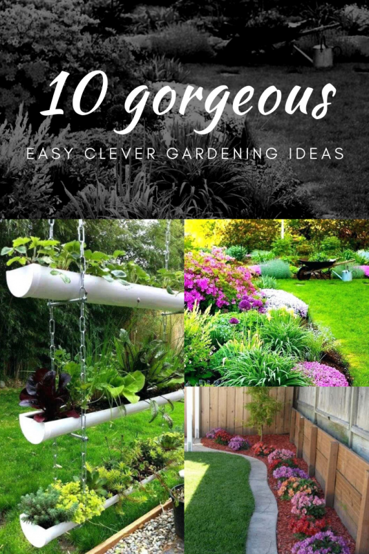 Easy Clever Gardening Ideas And Plant for Small Space On Low Budget