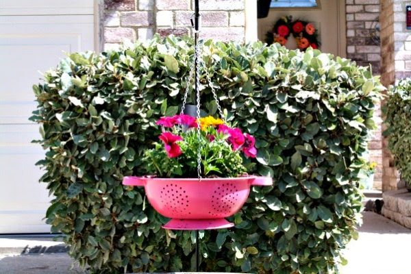 Yard Hang a Colander Planter