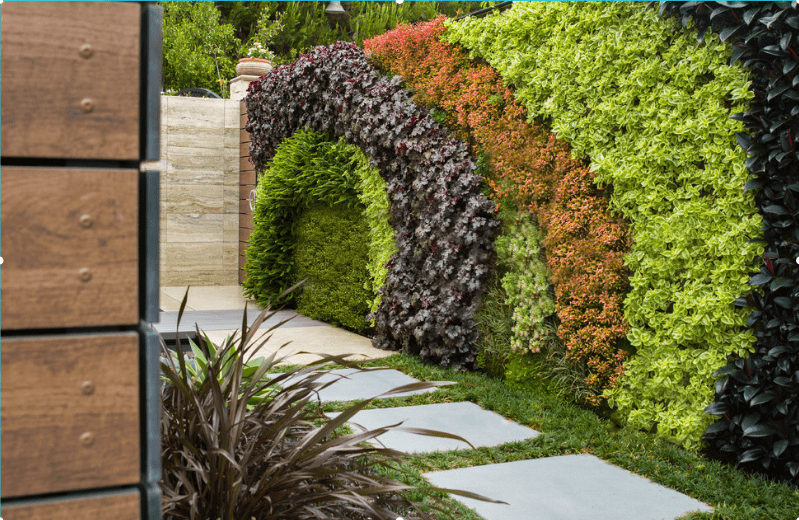 gardening ideas Create a Living Wall