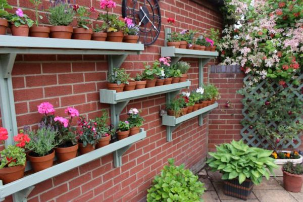 gardening ideas for beginners Set up Some Shelves