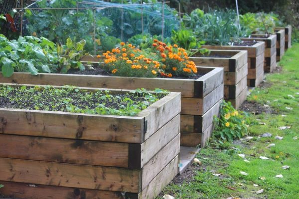gardening ideas for small gardens Try Raised Beds
