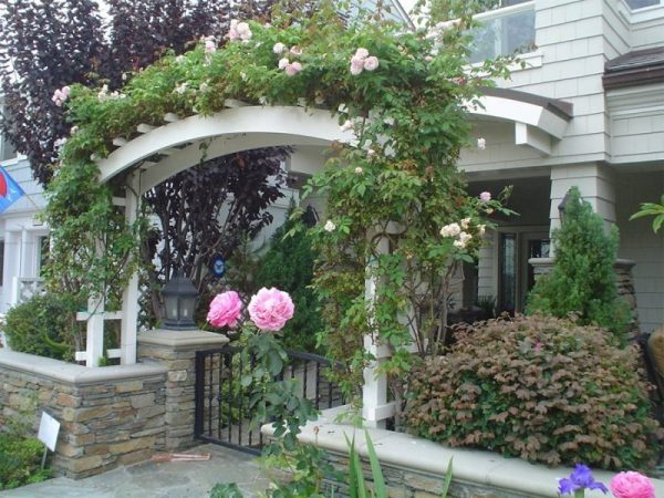 simple landscaping ideas Garden Arbor