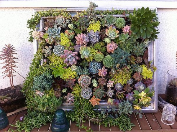 small garden ideas on a budget Set Up a Vertical Planter