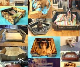 diy pallet ideas for pets